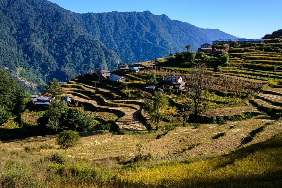 Annapurna Community trek – terrasvelden en huizen langs de trails