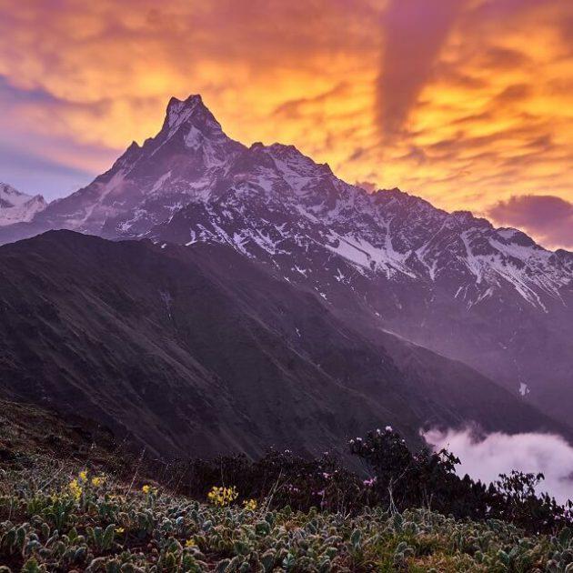 Mardi Himal trek - zicht op de Machhapuchhare