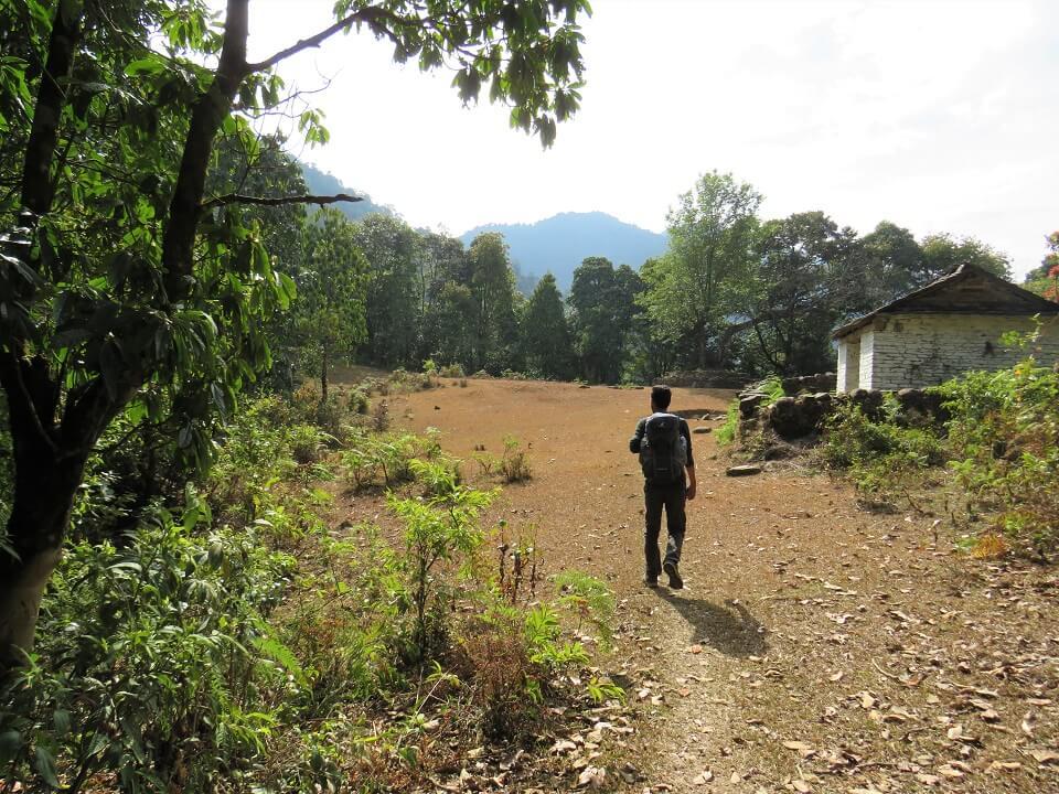 Panchase trekking – wandelen in bebost gebied waar er enkele huisjes staan