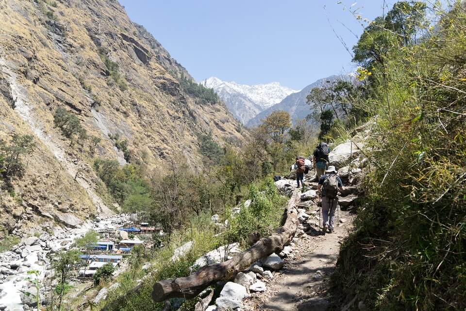 Langtang vallei trekking – trekkers wandelen met gids