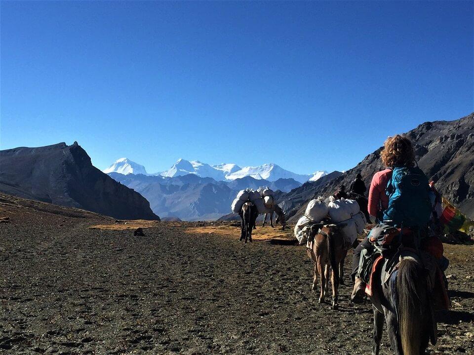 Upper Dolpo trek – paardjes met bagage en trekster tijdens trekking